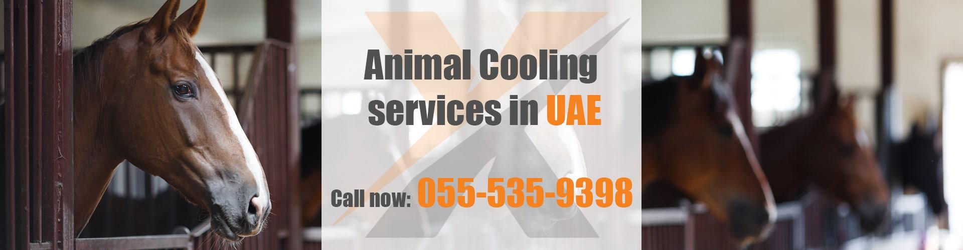 Animal Cooling